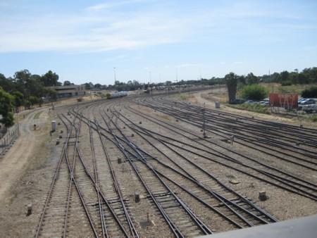 Adelaide's Train Track Tangles