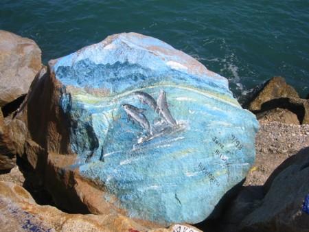 Nambucca Heads Rocks - Dolphins