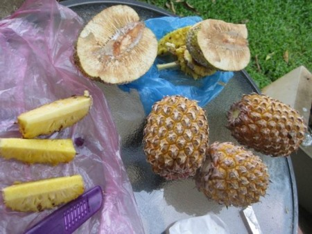 Pineapples & Breadfruit