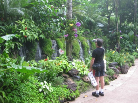 Singapore Botanic Gardens - David admiring an expanse of Waterfalls and Orchids