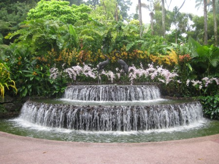 Singapore Botanic Gardens - Water Fountain & Orchid Display