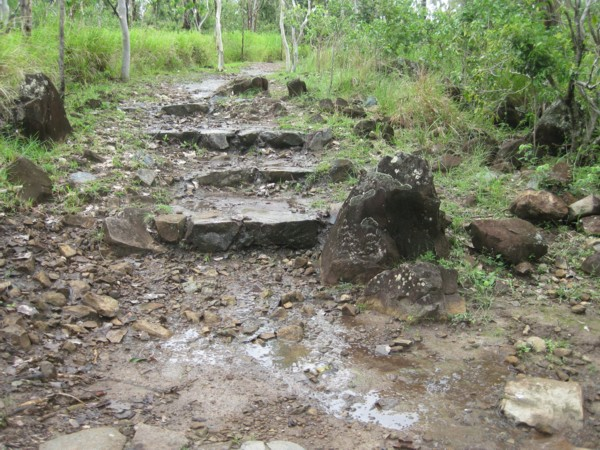 Rock  Steps in the Muddy Path