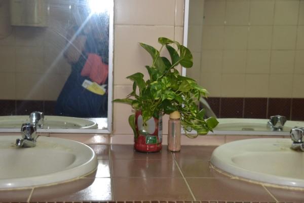 Bathroom Adornment